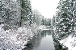 Nason Creek Winter